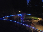 Fairy lights at night
