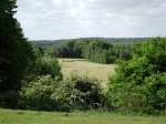 View over the Wensum Valley